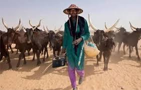 Gov Emmanuel Shuns Buhari, signs Anti Open- Grazing Bill
